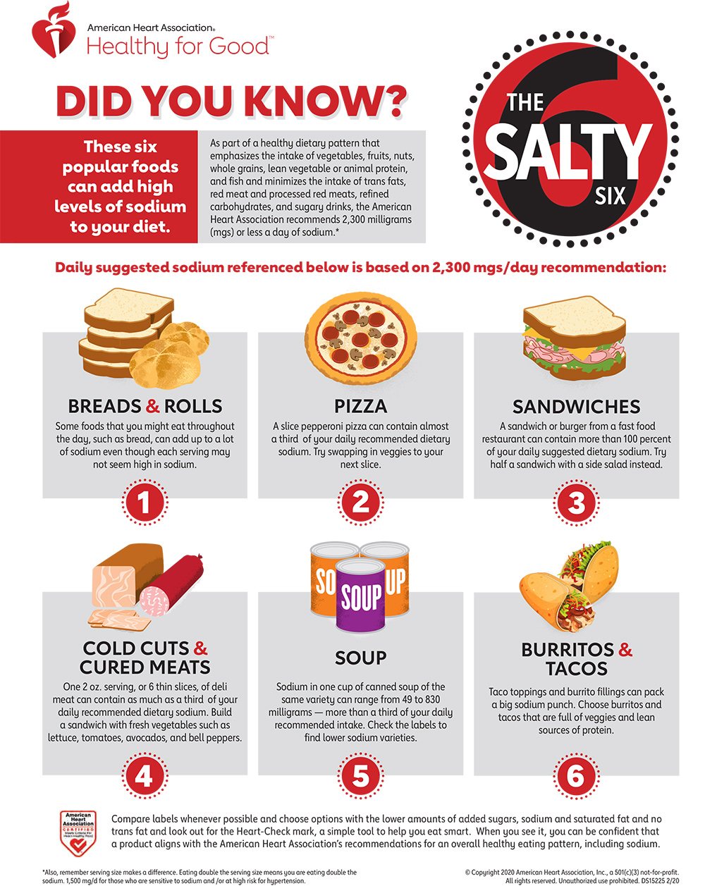 Salty Six Infographic