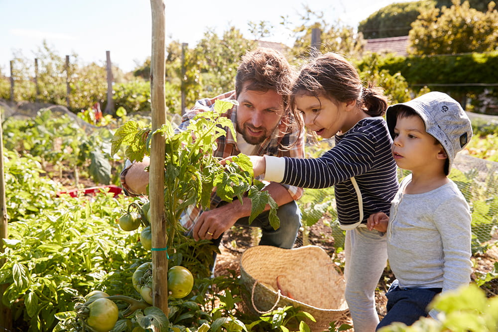 father gardening with kids