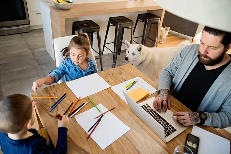 father uses laptop in kitchen while kids draw dog