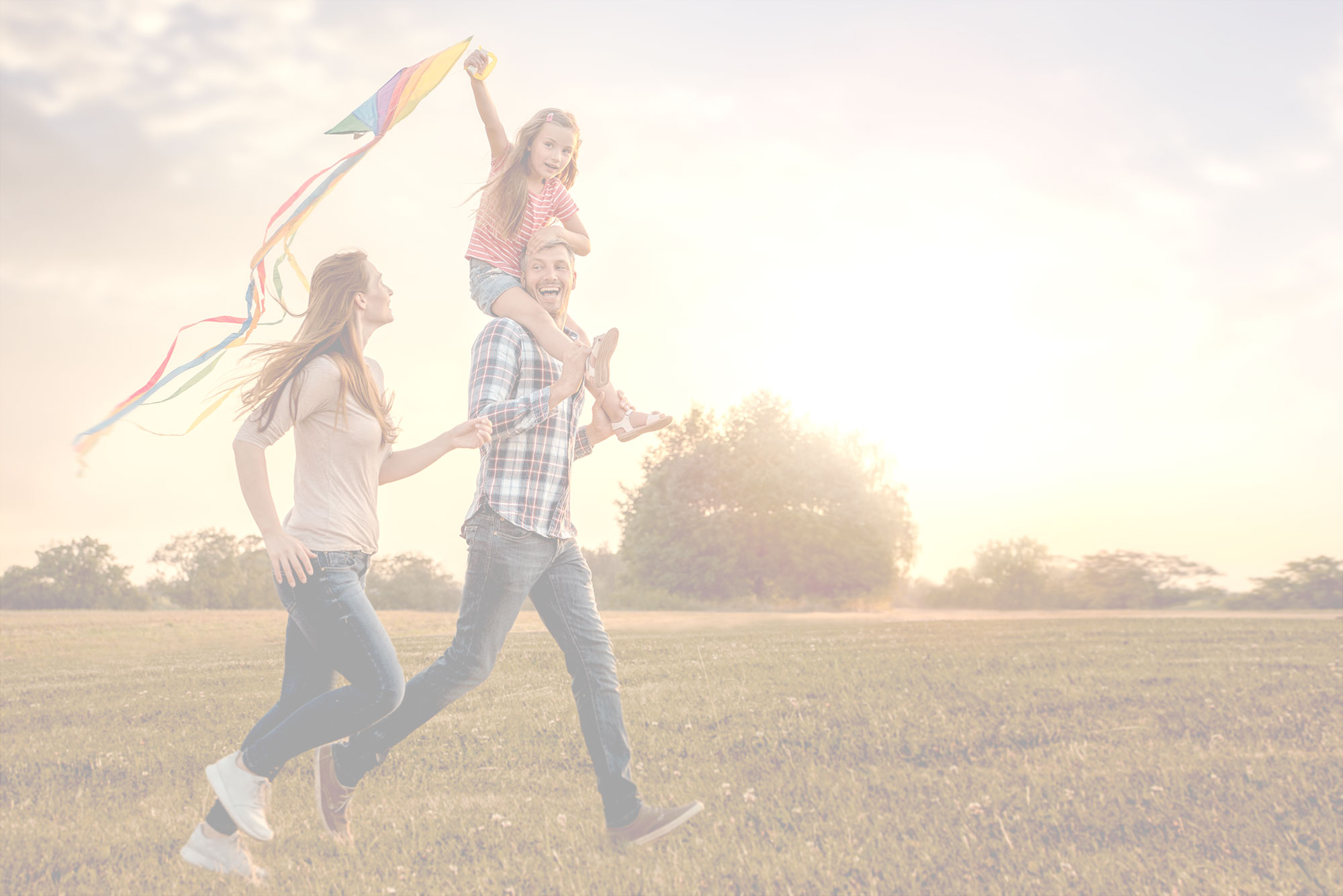 Family flying a kite in a park