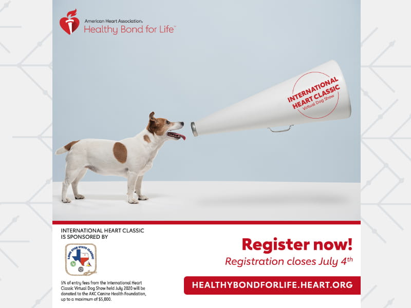 American Heart Association's International Heart Classic Virtual Dog Show