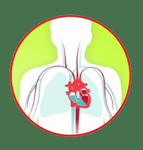 Heart failure diagram