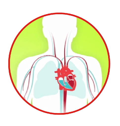 Heart failure diagram