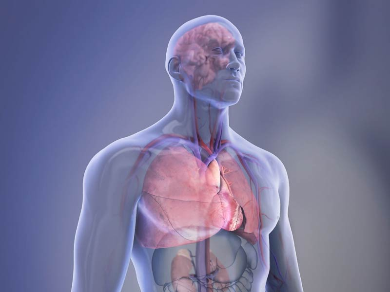 Cardiovascular Diseases Affect Nearly Half Of American