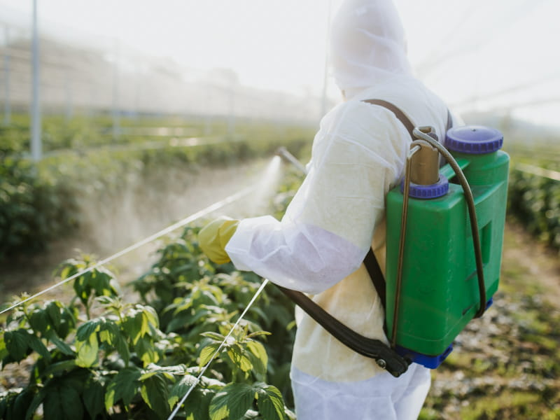 Pesticide exposure at work linked to risk of heart disease, stroke